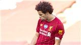 Trực tiếp bóng đá Brighton vs Liverpool: Tin vào lớp trẻ, Liverpool sẽ lại vô địch