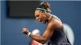 Tennis: Giải Rogers Cup sẽ là danh hiệu đầu tiên Serena Williams tặng con gái?