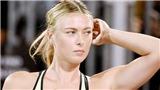 Maria Sharapova rất khó trở lại đỉnh cao sau khi lỡ hẹn Roland Garros 2019