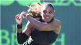 Không được xếp hạng hạt giống ở Roland Garros, Serena Williams đang bị đối xử bất công?