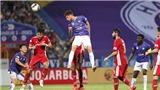 V-League bị hủy: Nhìn lại một quyết định lịch sử