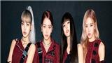 Blackpink trở thành nhóm nhạc nữ sở hữu tour diễn lớn nhất trong lịch sử Kpop