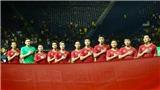 HLV Park Hang Seo được VFF ưu tiên gia hạn hợp đồng