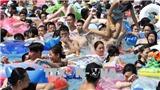 Nhật Bản: Gần 10.000 người nhập viện do nắng nóng