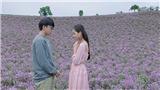'Sống cùng lịch sử' và 'Sống giữa yêu thương' được chiếu trong Đợt phim kỷ niệm các ngày lễ lớn