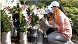 Nhật Bản: Tưởng niệm vụ tai nạn thảm khốc làm 520 hành khách thiệt mạng