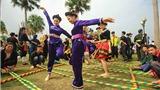 Tổ chức Tuần 'Đại đoàn kết các dân tộc - Di sản văn hóa Việt Nam'
