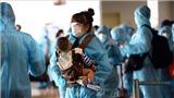 Dịch COVID-19: Việt Nam ghi nhận 6 ca mắc mới nhập cảnh, thêm 15 người khỏi bệnh