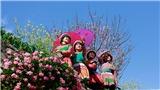 Du lịch Sa Pa qua 250 ảnh đẹp 'Hành trình của biểu tượng'