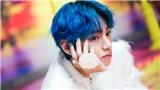 ARMY háo hức khi tvN tung 'thính' về V BTS