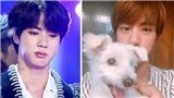 Tìm ra bí quyết khiến trái tim Jin BTS 'tan chảy'