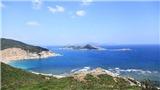 Kinh nghiệm khám phá Vịnh Vĩnh Hy, biển Bình Tiên, đảo Bình Hưng chỉ 150k/người
