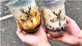 Những quán trà ngon ở Hà Nội