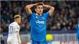 Bóng đá Ý rúng động: Cả Dybala và Paolo Maldini đều bị nhiễm covid-19