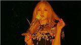 Cảnh sát điều tra SBS sau vụ tai nạn sân khấu khiến Wendy Red Velvet ngã từ độ cao 2,5m