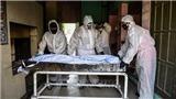 Dịch COVID-19 ngày 29/4: Thế giới có hơn 3,16 triệu ca mắc bệnh, hơn 219.000 ca tử vong