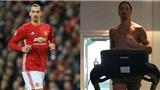 Zlatan Ibrahimovic: ' Nói với Jose, tôi đến đây!'