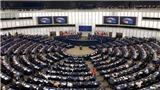 Nghị viện châu Âu bỏ phiếu phê chuẩn EVFTA: Thể hiện sự tin cậy giữa Việt Nam và EU