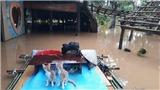 Mưa lũ ở Đồng Nai khiến 2 người thiệt mạng