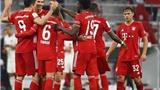 Link xem trực tiếp bóng đá. Bayern Munich vs Borussia Dortmund.VTV6 trực tiếp bóng đá Đức