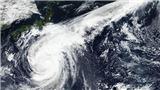 VIDEO: Giải mã sức mạnh của siêu bão Hagibis