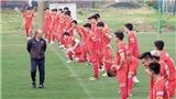 Bóng đá Việt Nam hôm nay: Đội tuyển Việt Nam sang Saudi Arabia sớm để thích nghi khí hậu