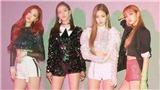 Bất chấp lượng fan hùng hậu của BTS, Black Pink vẫn là bá chủ kpop trên Youtube