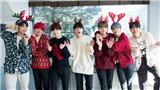 BTS tiết lộ kế hoạch mùa đông 2019, fan ăn mừng album mới