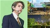Fan BTS trồng 'Rừng Taehyung' xanh mướt gần sông Hàn