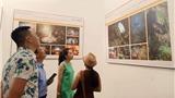 Bộ ảnh 'Muối hầm Tuyết Diêm' đoạt giải Đặc biệt cuộc thi 'Hành trình di sản 2020'