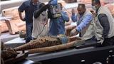 Ai Cập công bố những phát hiện khảo cổ học lớn nhất trong năm