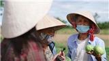 MV 'Gửi vô Nam' của Ánh Tuyết: Bà con nghèo góp nhặt từng bó rau, vài chục nghìn đồng