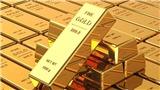 Giá vàng hôm nay 8/9 liên tục cập nhật diễn biến mới nhất