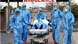 Thế giới hơn 53 triệu người mắc Covid-19, hơn 1,3 triệu ca tử vong