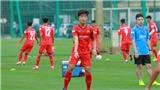 Link xem trực tiếp U22 Việt Nam đấu tập nội bộ. Bóng đá Việt Nam