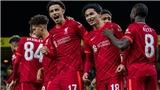 TRỰC TIẾP bóng đá Preston vs Liverpool, Cúp Liên đoàn Anh (01h45, 28/10)