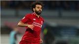 Xem TRỰC TIẾP Liverpool vs Fulham (19h00, 11/11) ở đâu?