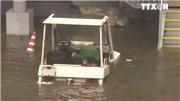 Nhật Bản triển khai nỗ lực ứng phó siêu bão Jebi