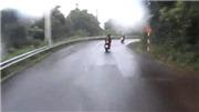 VIDEO: Đà Nẵng khuyến cáo không dùng xe tay ga lên núi Sơn Trà