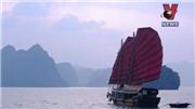 Tạp chí Forbes viết về 10 bãi biển đẹp nhất Việt Nam