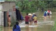 Mưa lớn gây ngập hơn 900 ngôi nhà tại Cao Bằng