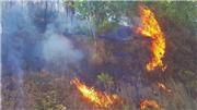 Cháy rừng tại Hà Tĩnh có thể là do người dân đốt hương