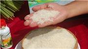 VIDEO: Gạo ngon nhất thế giới ST25 bày bán tại Hà Nội là mạo danh