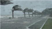 Chiều tối nay, bão đổ bộ đất liền, sức gió vùng tâm bão giật cấp 11