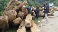 Hà Tĩnh: Kỷ luật 2 phó giám đốc sở và 3 phó chủ tịch UBND huyện
