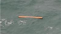 Tìm thấy vật thể giống cánh cửa máy bay AirAsia bị mất tích