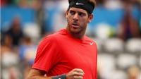 Del Potro rút khỏi Australian Open vì chấn thương