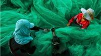 Bức ảnh ngư dân Việt Nam đoạt giải nhất nhiếp ảnh ở Mỹ