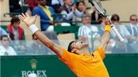 19h30 hôm nay, Chung kết Monte Carlo Masters: Berdych không thể cản Djokovic?