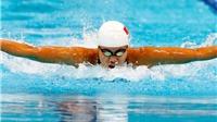 Vì sao Ánh Viên bỏ nội dung 100m bơi ngửa?